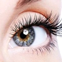 Nikki Lashes & Spa, 9444 35th Ave SW, Seattle, WA, 98126, United State